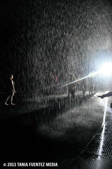 VISITORS EXPERIENCING THE RAIN ROOM AT MoMA, 2013