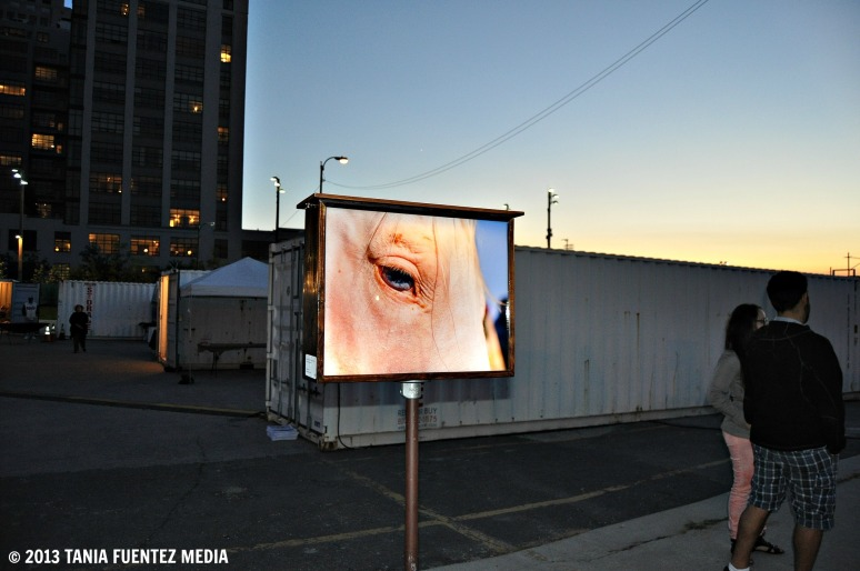 LINKA ODOM'S FREE-STANDING, DOUBLE-SIDED LIGHTBOX INSTALLATION AT 2013 PHOTOVILLE